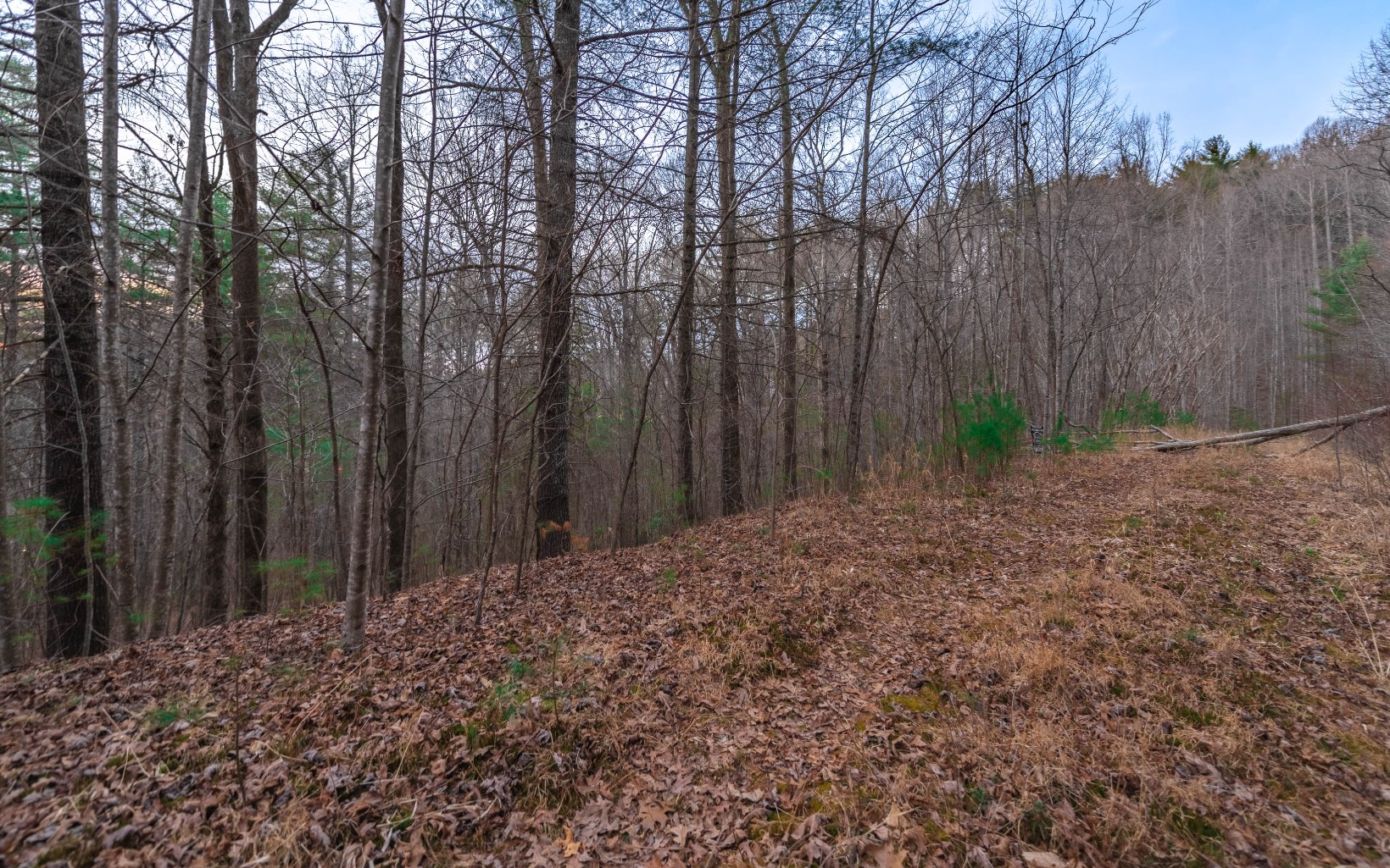 MIDDLE CREEK ROAD 35