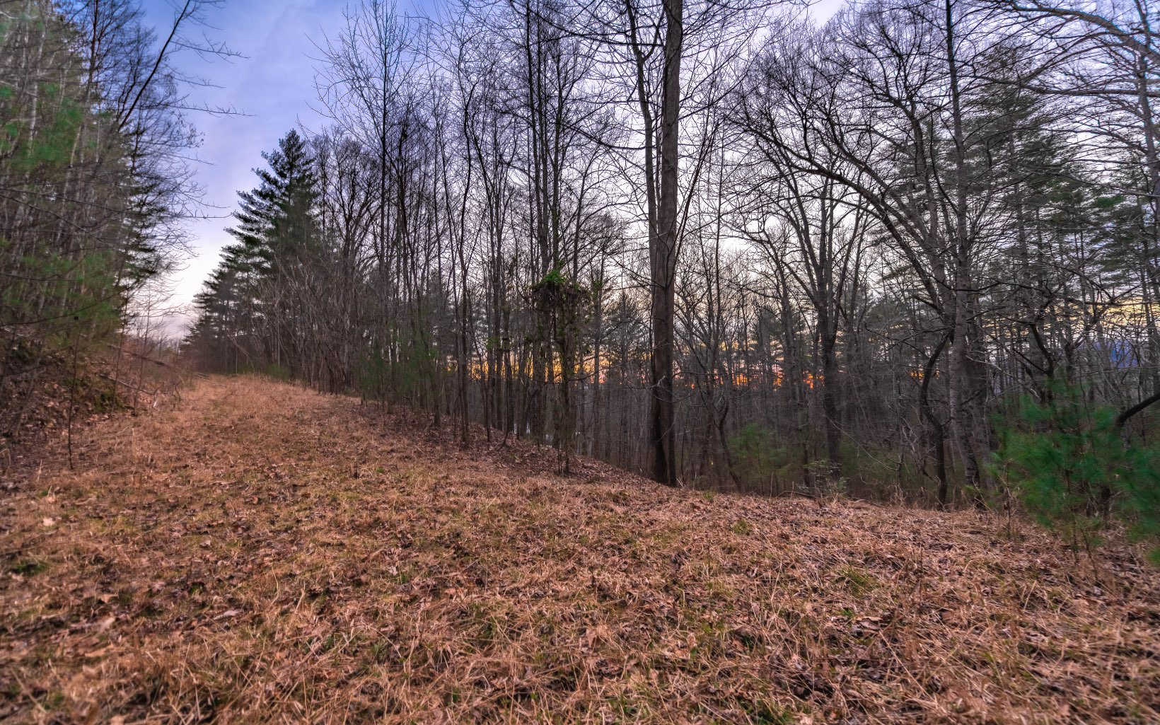 MIDDLE CREEK ROAD 36