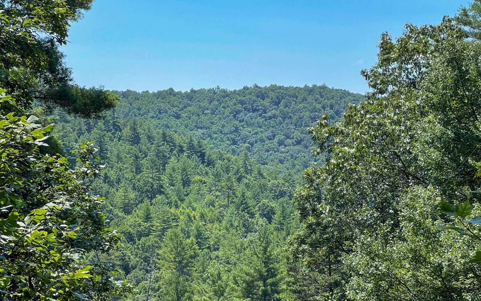 1.94  TOCCOA OVERLOOK DR