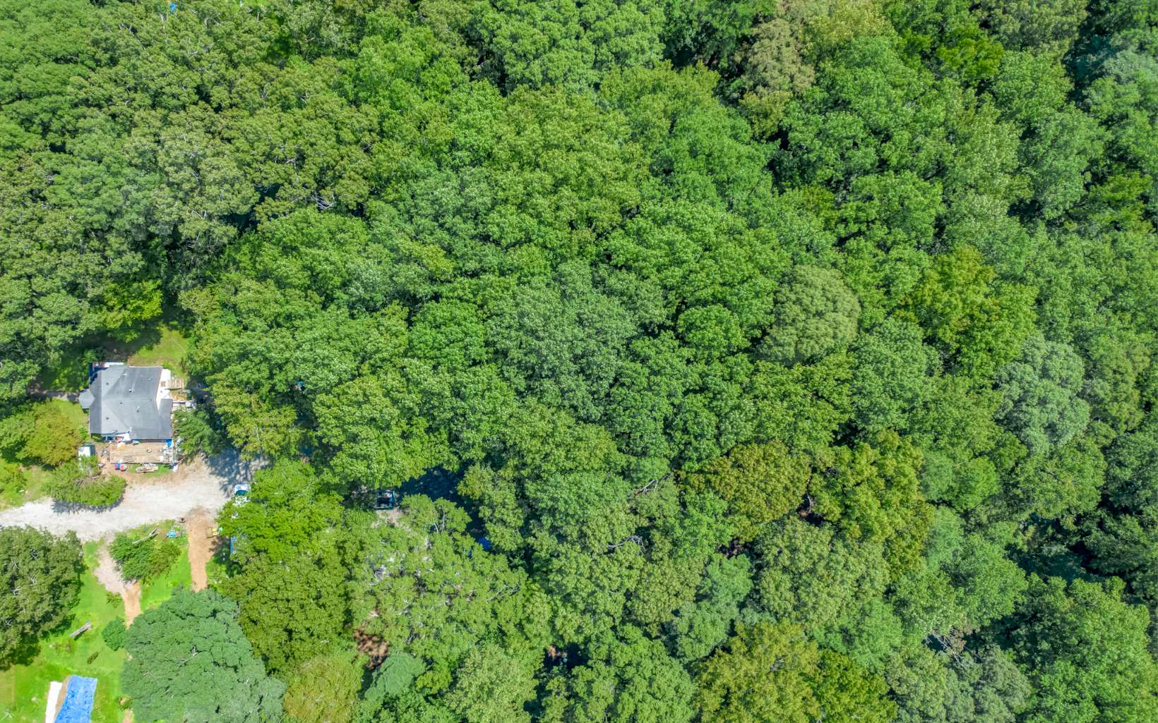 1.25  ACRES ON SCHELL RD