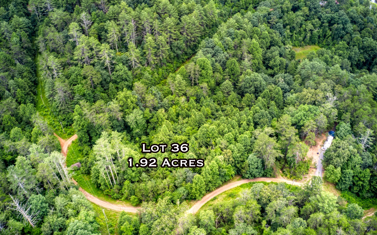 Don't miss this opportunity! Start living your mountain dream with deeded river access. Drop your line, or float down the TOCCOA RIVER. These lots are going fast! Conveniently located close to Blue Ridge and McCaysville. City power and water available. Nice flowing branch runs through the property. NO HOA's and SOIL TEST AVAILABLE. Bring your Builder. LOT 35 also available for sale. DEEDED RIVER ACCESS LOT.