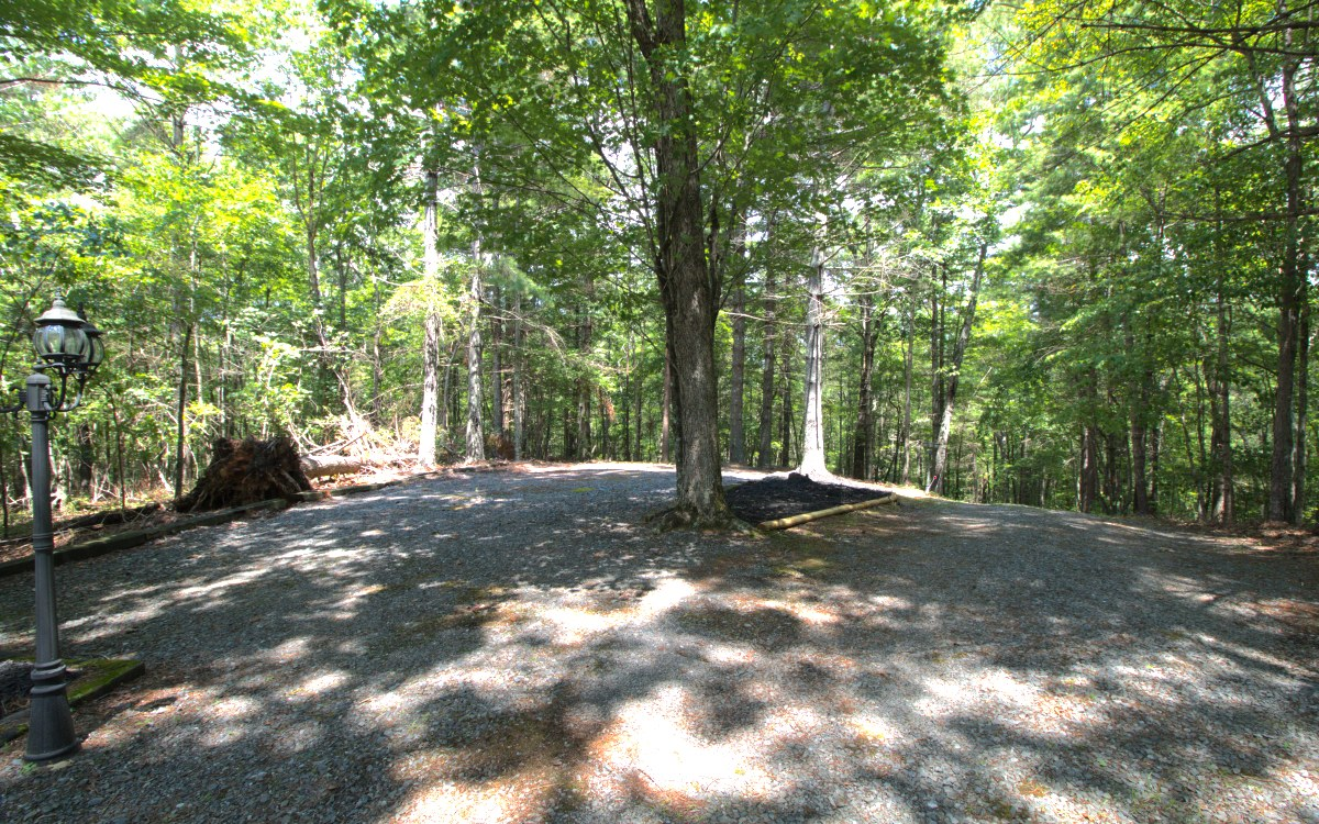 DEEDED BLUE RIDGE LAKE ACCESS with Mountain View lot Bordering National Forest. Gentle lot was purchased for additional parking for 141 Tilley Bend Lane. Can be purchased with that Home or purchased alone. Nice build site and with a few trees topped would possibly have a nice mountain View.