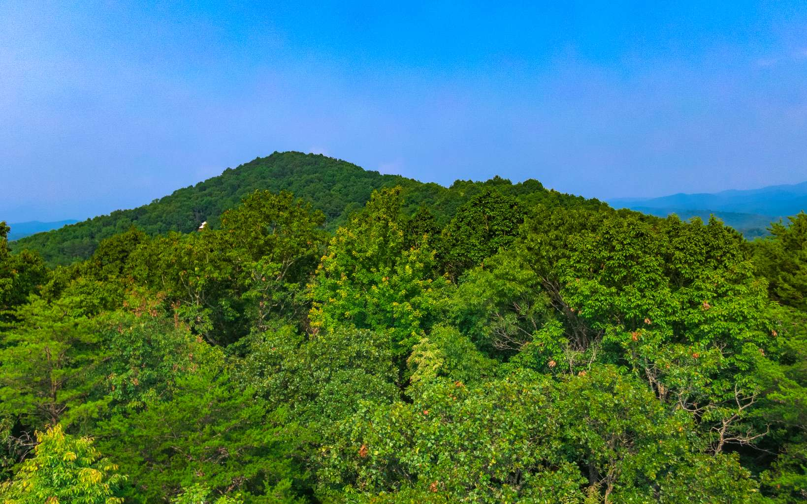 SHINBONE MOUNTAIN