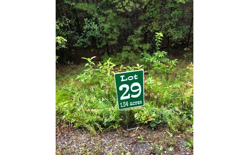 LT 29  HUNTERS RIDGE