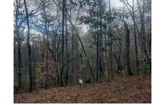 0 APPALACHIAN HWY, Blue Ridge, GA 30513