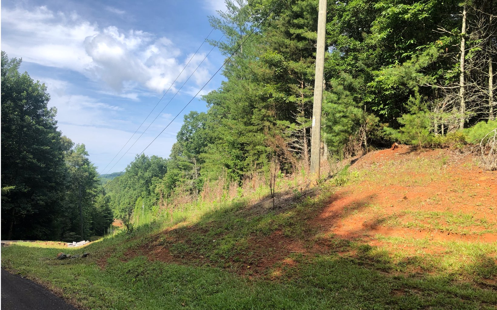 39  MAPLE REST TRAIL