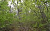 8  OAK FOREST ACRES
