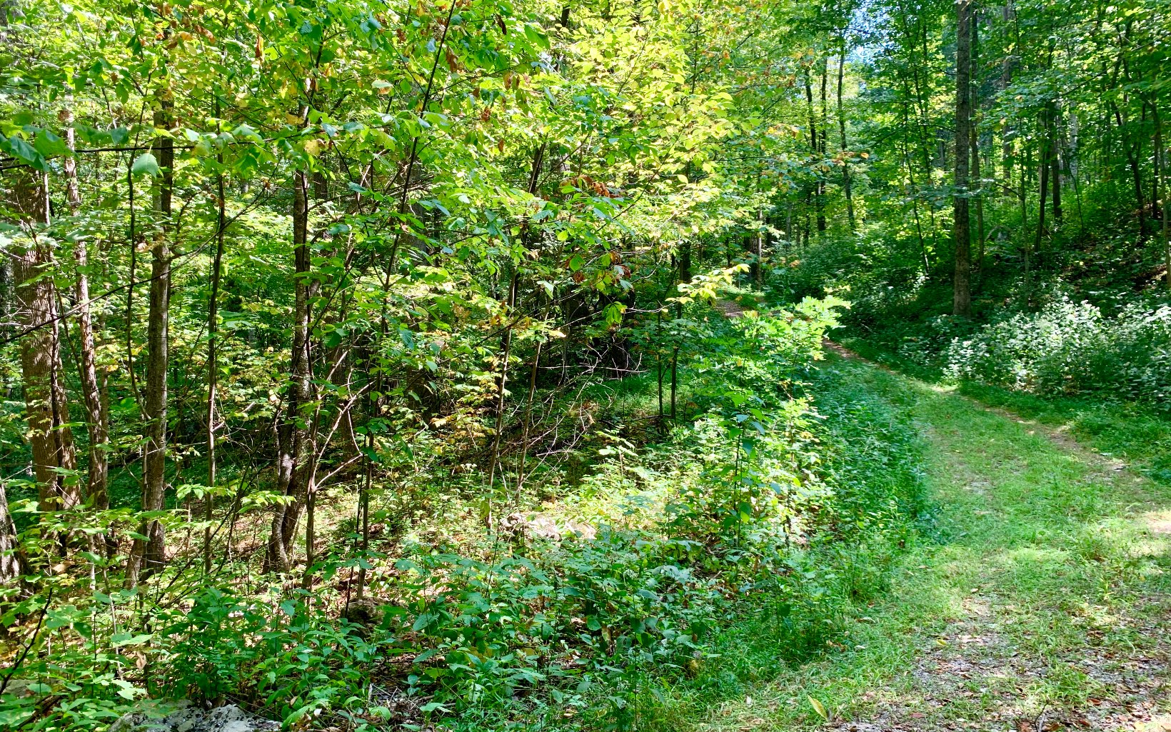38  SPRING COVE LOT 38