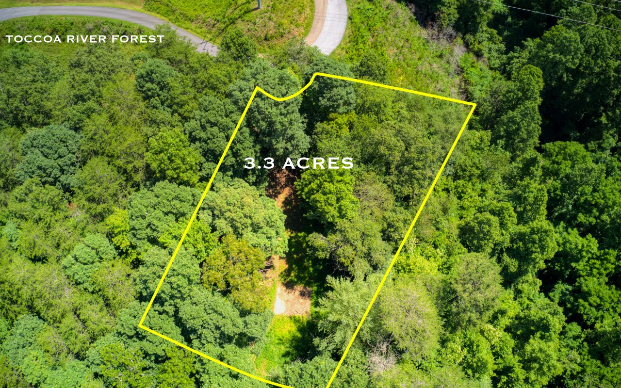 Location!! Location! In a beautiful community of cabins within seconds of Toccoa River. Paved Roads to property. Lots of hardwoods and already has a 1000 gal septic, City water and power. A home burnt on this property in 2017.