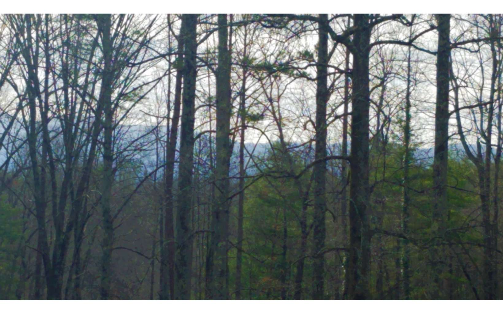 Nice gentle lot approximately 400' of road frontage, paved access, seasonal mountain views, located between Blue Ridge and Ellijay off Boardtown Rd. Close to hiking, Toccoa River, Blue Ridge Lake and Downtown Blue Ridge for Shopping & Dinning.
