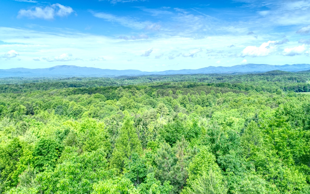 Beautiful Building site in upscale development. Offering City Water, and all paved access. Has a long range VIEW if a few trees trimmed. One of the last VIEW lots in the development. Close to up & coming McCaysville where you can sit on the largest outdoor Dining porch overlooking the Toccoa River or take a Slow float down the Toccoa or if you are feeling froggy drive the short distance for the class 5 Ocoee River for Whitewater rafting. Less than 15 minutes to Downtown Blue Ridge and Lake Blue Ridge as well. Make this development your new home place in the Blue Ridge Mountains of North Georgia. View, View, View!!
