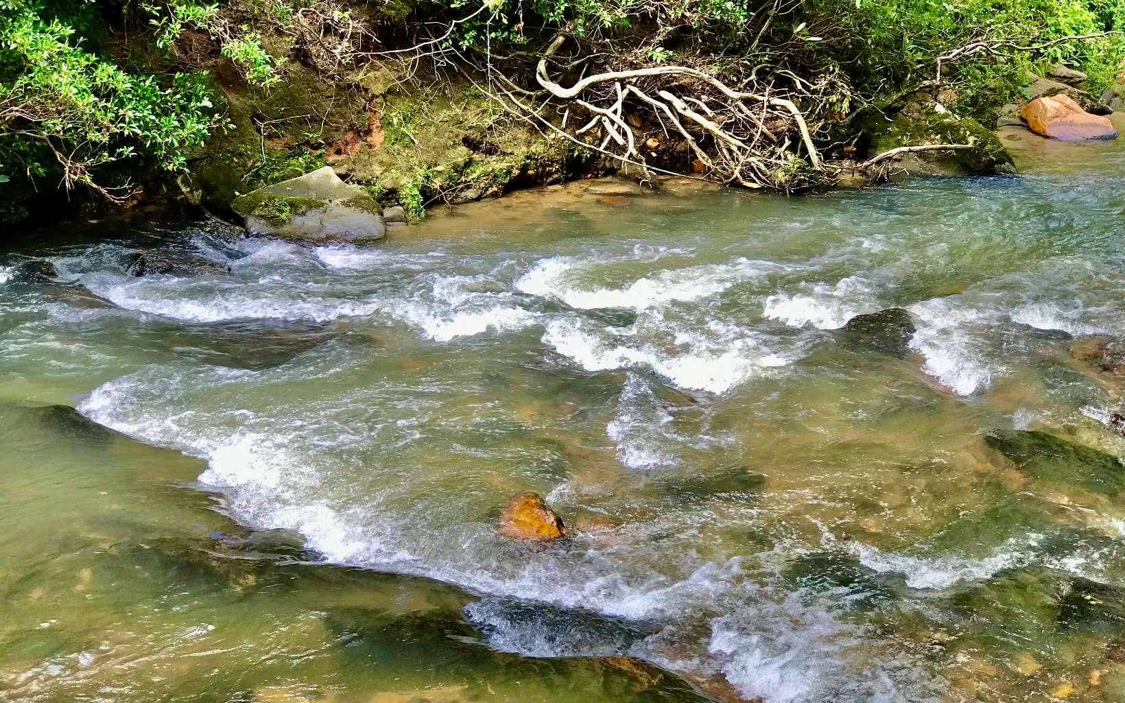 River Access Lot