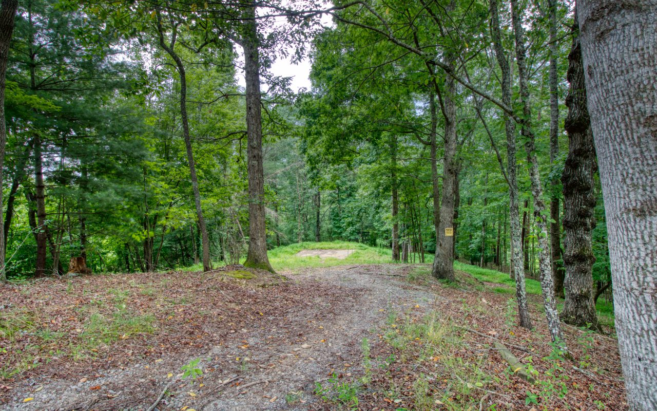 Location! Location! Beautiful wooded lot w/ septic already installed/power and city water. Concrete pad still in place. This lot is located in a quaint community of cabins within minutes or Toccoa River for tubing and trout fishing. 10 to 15 Minutes of Lake Blue Ridge and Hiking trails/forest Service land and same distance to shopping and fine dining downtown Blue Ridge. Paved roads to property. (There was a home on this property but burnt in 2017).