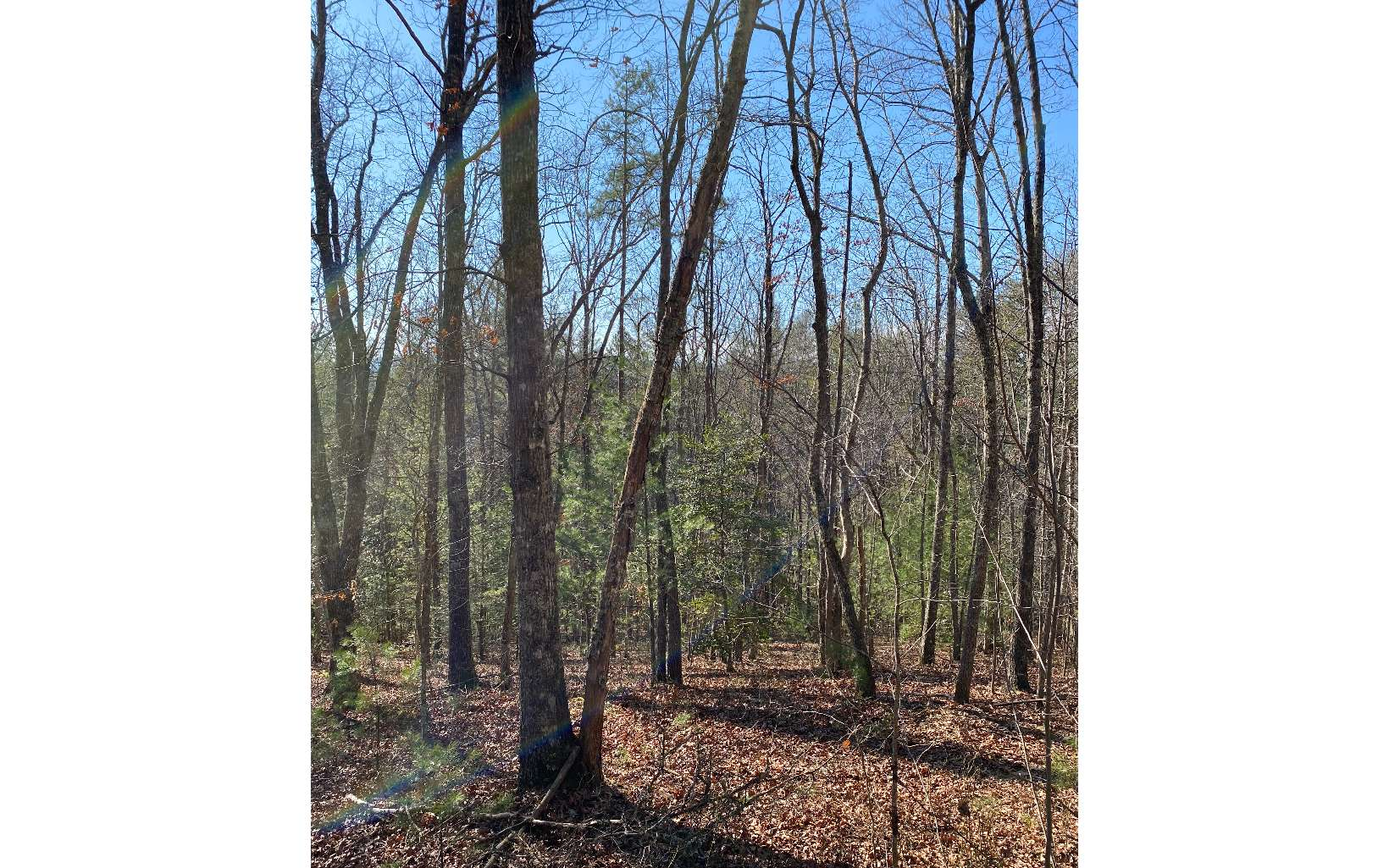 LOT 8  PIPING ROCK DR.