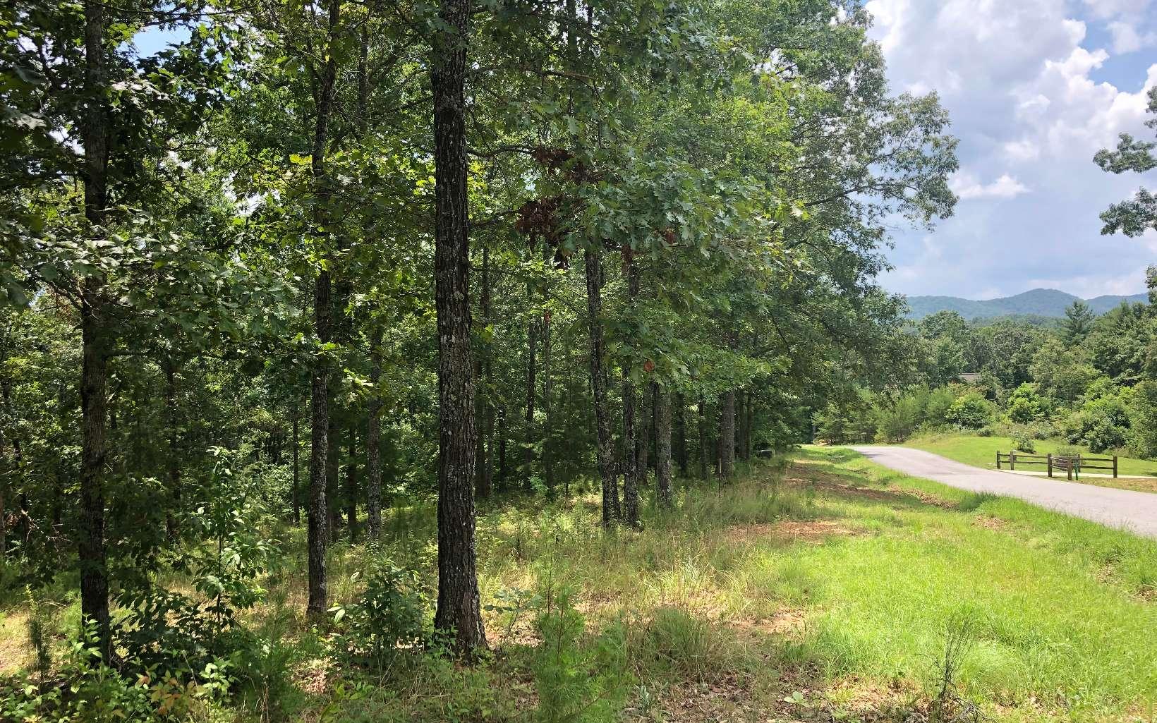 Blairsville Realty, NORTH GEORGIA REAL ESTATE, HOMES & LAND