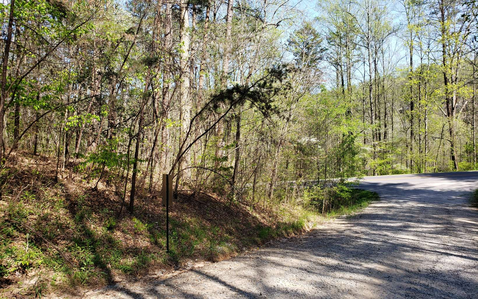 VERY AFFORDABLE with Easy Accessibility to McCaysville & Blue Ridge. All paved Access. 1.39 Acres of gentle wooded land. Close to Whitewater Rafting, Tubing, Horseback Riding, Harrah's Casino and much more. BUY, BUY, BUY!!!